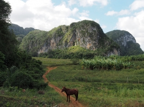 Vinales valley